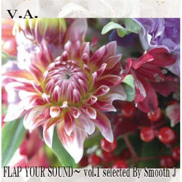 V.A. - FLAP YOUR SOUND